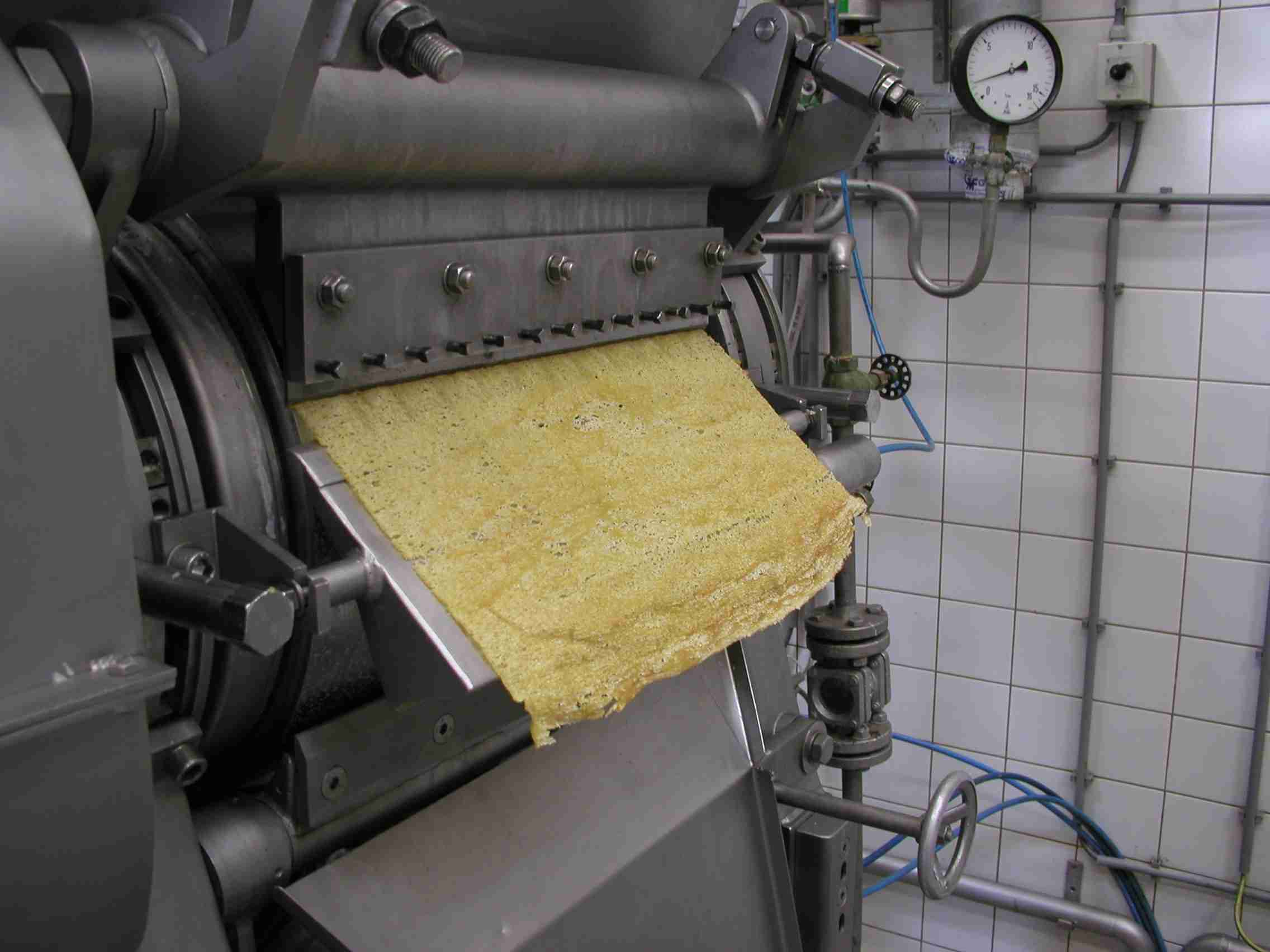 The drum dryer is capable of drying viscous, pasty, and sticky products. This is mango paste dried on the drum.