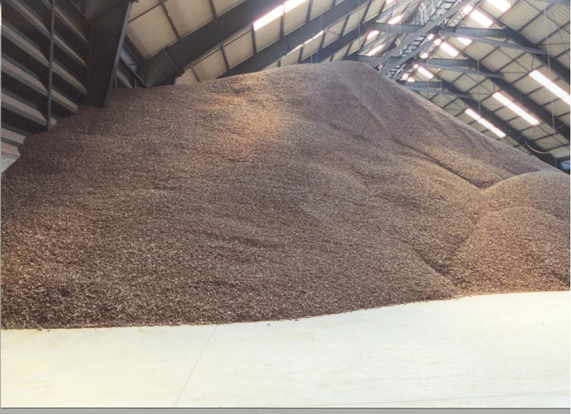 Dried sugar beet pulp