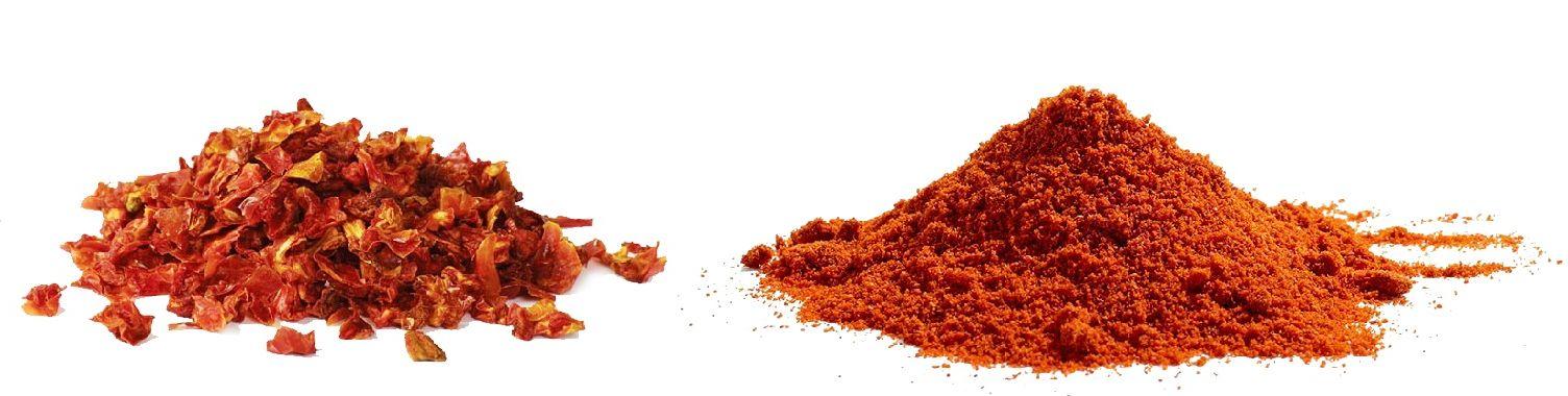 Dried tomato powder dried on the Ingetecsa Spiral Flash Dryer